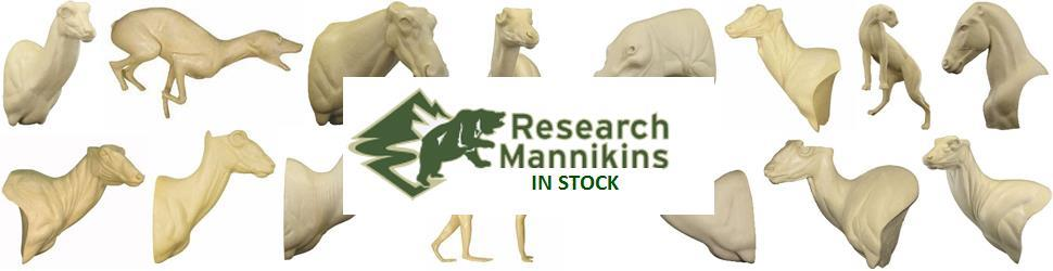 Research Mannikins are now in stock - Order Online today